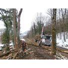Chargement des bois et transport